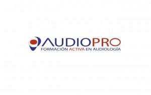 portfolio-audiopro2