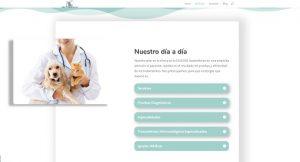 clinica veterinaria del mar dia a dia